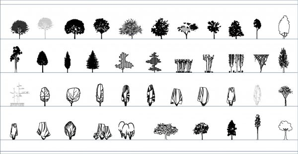 005-Vegetation-Cad-Blocks-Trees-Elevation