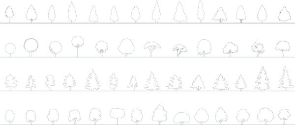 007-Vegetation-Cad-Blocks-Simple-Trees-Elevation
