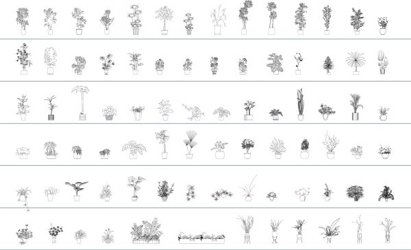 Vegetation Cad Blocks Potted Plants Elevation 013