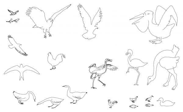 008-Birds-Cad-Blocks