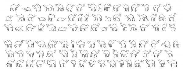 009-Camels-Cad-Blocks