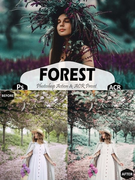 018-Forest Photoshop Actions and ACR Presets 1629295