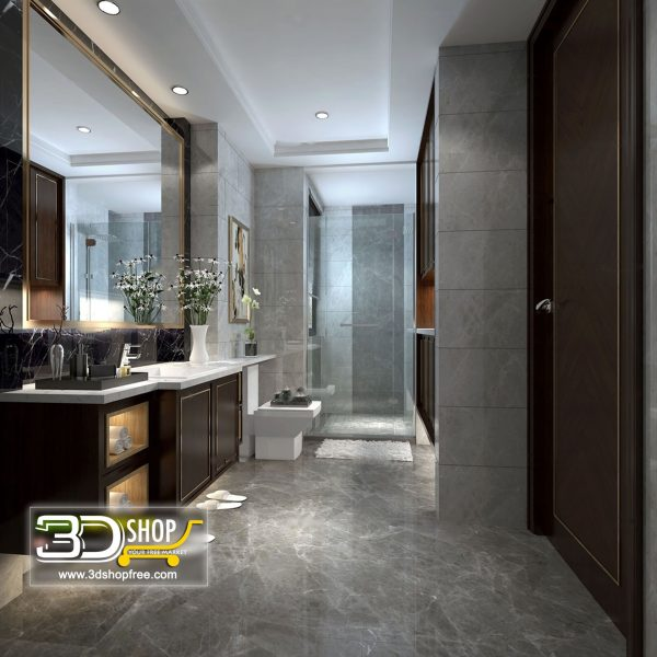 047 Bathroom Interior Scene