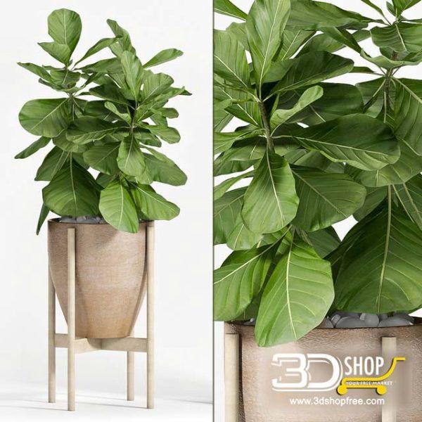 Plant Vase 3D Models 035