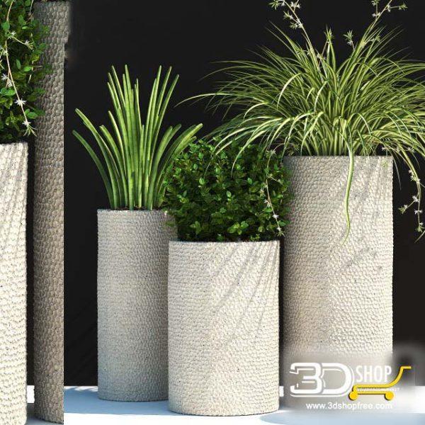 Plant Vases 3D Models 029