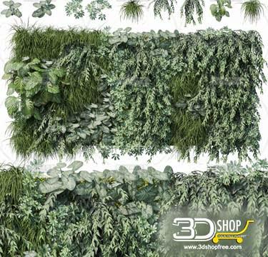 Plant Wall 3D Models 031