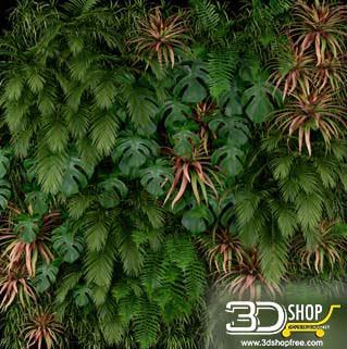 Plant Wall 3D Models 035