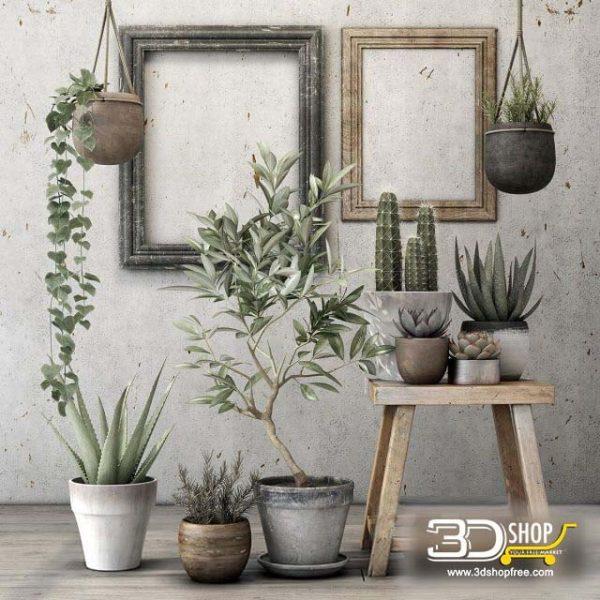 Plants Collection  3D Models 030