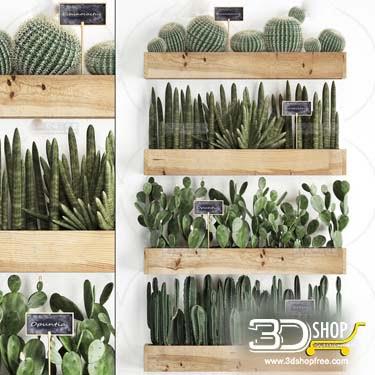 Plants Collection  3D Models 031